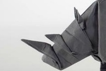 Paper and Folding / by Virginia Polo