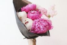 flower fix / by One Plus One Design