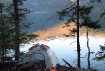 Camping and Picnics