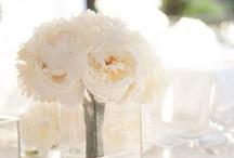 Wedding Flowers / by Brittany Jones