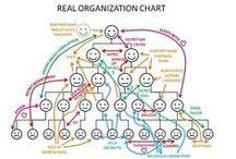 Organisatie structuur / Verschillende organisatie structuren