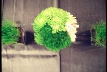 Green Wedding Style / Green flowers and decor for weddings / by Katie Martin