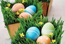 Easter Gifts / Lovely gifts, ideas and inspiration to make the perfect Easter basket!  / by Gifts.com