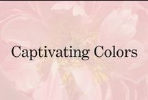 Captivating Color / The trending colors that inspire us. / by Soma Intimates