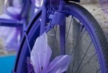 Bicycles / by Jennifer Schorr