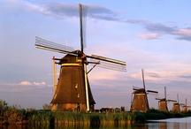 Let's Go Dutch / by Jennifer Schorr