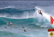 SURF CHECK / waves of Japan and Hawaii