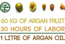 The Argan Tree / The Argan Tree is a business cooperative made up of 18 women in Morocco who produce low-cost, ethically conscious culinary and cosmetic argan oil. I'm one of three members on the team here in the U.S. trying to empower these women, as every dollar you spend, 33 cents goes back to them. Check it out at: http://theargantree.com/