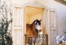 Equestrian style / Interior, design +++