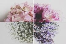 Flower Arranging & Spring Flower Potluck