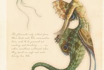 Fairies & Mermaids