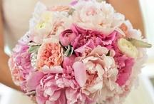 Moss Fine Floral Bouquets