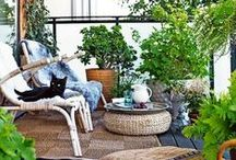My Garden Variety / Outdoor Patio & Garden Space