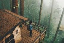 Our Forest Cabin / outdoor, forest, cabin, mountains, woods, morning, snow, cold, washington, cascades, log cabin, into the woods, getaway