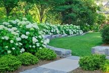 Gardens, Ponds, Landscaping