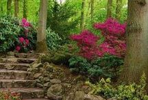 Gorgeous Exteriors & Landscape / Inspiration for yards, patios and house exteriors