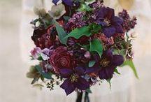 Bouquets that Catch our Eye
