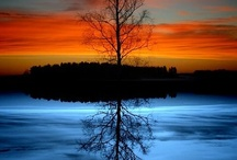 Reflections / by Linda N Danny Polk