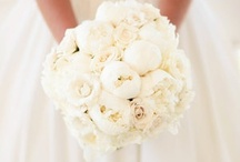Weddings ★  Flowers / ...flowers to flowers...