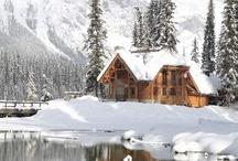 ❇ ❈ ❄ Let It Snow ❆ Let It Snow ❆ Let It Snow ❄ ❇ ❈ ❅ ❆ ❄ ❆ ❇ ❈ ❅ ❄ ❆ ❇ ❈ ❅ ❄ ❆ / by Rhoda Cook