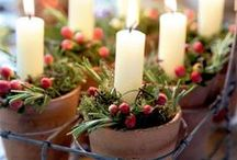 Christmas / by Cristina Wood