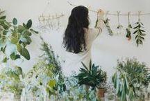*。:゚HANGING GREEN☆・゚:* / green house