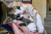 Too cute! / by Jennifer Moreno