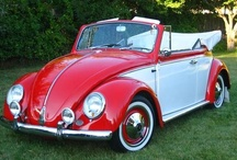 Punch Buggy! / I love the VW Beetle. That's all that needs to be said.