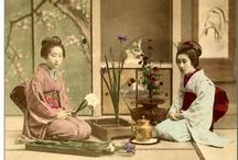 Ikebana / Bonsai