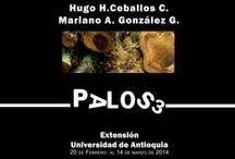 PALOS 3 / Exposición. Edificio de Extensión, Universidad de Antioquia Medellín, Febrero. marzo, abril de 2014