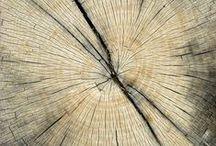 Wood / Wood art
