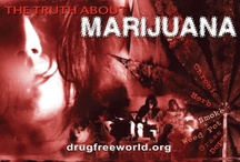 Foundation for a Drug Free World