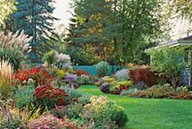 Gardens & Landscape / Ideas for Gardening and Landscape, as well as some flowers / by Marilyn Gerhard
