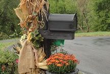 Mailboxes / by Gayle Schmidt Samuels