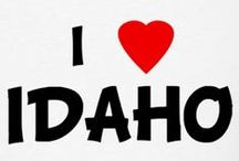And Here We Have Idaho / Everything Idaho / by Marilyn Gerhard