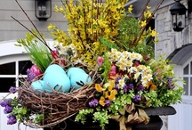 Easter / by Robin Rogness