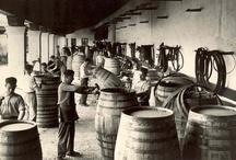 Labores del Fino / Fino Industry Tasks
