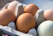 Edibles/Eggs