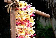 Baptême Hawaii