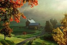 Country Roads / by Suzanne Holmes Avilio