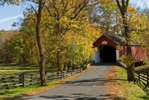Covered Bridges / by Suzanne Holmes Avilio