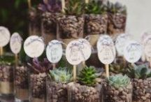Wedding Favors / all types of wedding favors / by Trendy Bride