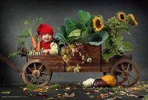 Vegan Market / Imaginarium of Vegan Delights / by Destiny Bones