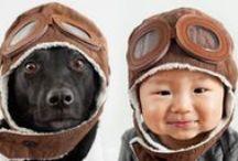 Pug, Boston, Doggie Love & Care / Love, Health, Training, Care, Recipes / by Destiny Bones