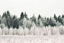 photography | winter inspiration