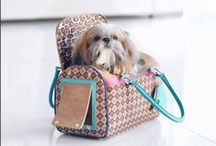 Pet | Carmen Steffens / Linha PET CSl  ❤️ A nossa linha é composta por Bolsas, Coleiras e lenços! Conheça!