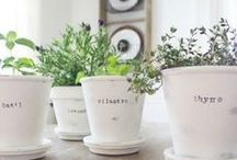 Chalk Paint Projects / Chalk paint has been trending for years.  These ideas inspire me to jump on board!