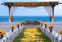 Ohhhh weddings! / by Kristina L