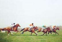 Derby Day / by Meg Carnett