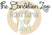 Adventures: USA / Travel ideas for the USA / by Zookeeper